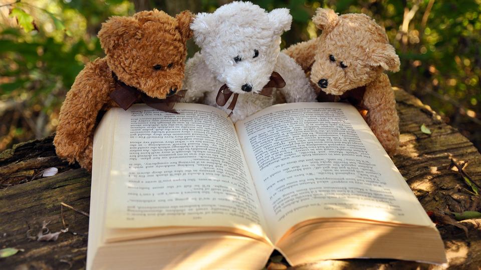 Roda dos Livros
